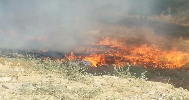 Arazi yangını akaryakıt istasyonuna 20 metre kala söndürüldü