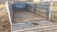 Hırsızlar kamyonu ve hayvanları bırakıp kaçtı