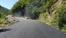 Gölköyde asfalt seferberliği