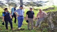 Çınar, orman emval üretimi çalışmalarını inceledi