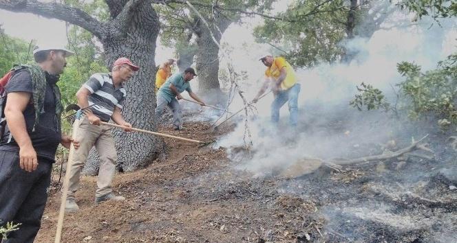 Tunceli'deki orman yangınları tamamen kontrol altına alındı