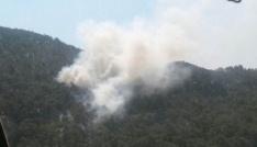 Bozdoğanda 10 dönüm tarım arazisi yangında zarar gördü