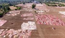 Antalyanın susuz tarımı: Milyon dolarlık halı tarlaları