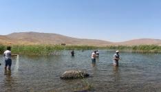 Türkiyenin en yüksek rakımlı gölü ziyaretçi akınına uğruyor