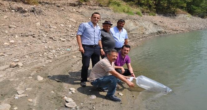 Simavda göletlere 27 bin yavru balık bırakıldı