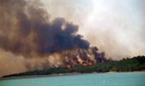 Ayvalıktaki orman yangınında sabotaj şüphesi
