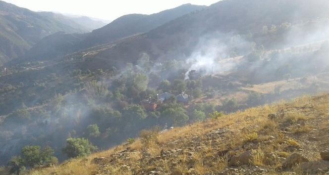 Tunceli'de bir ev ve meyve ağaçları yandı