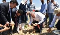 Bakan Fakıbaba tarım işçileriyle birlikte soğan topladı