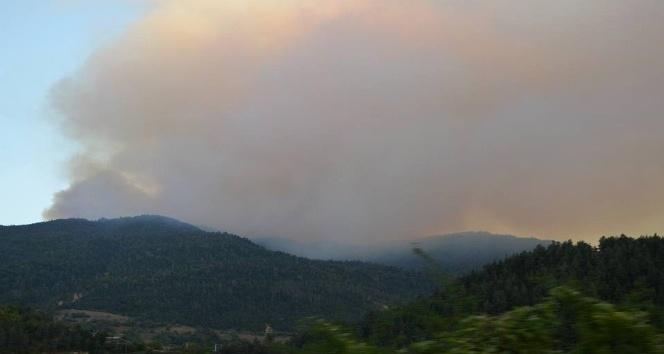 Gürcistan'daki orman yangınının karabulutları Posof'u sardı