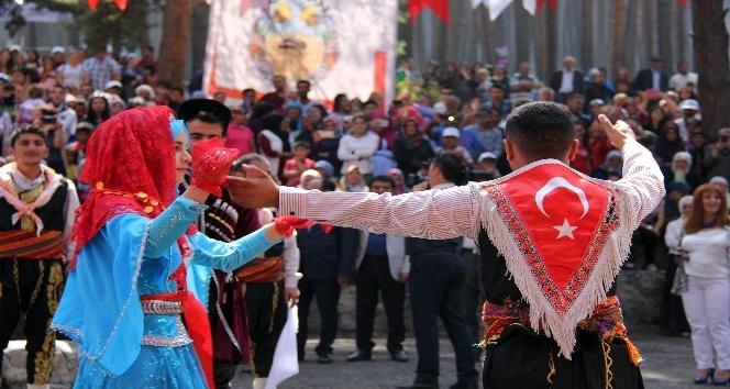 Ardahan'da bal festivali heyecanı