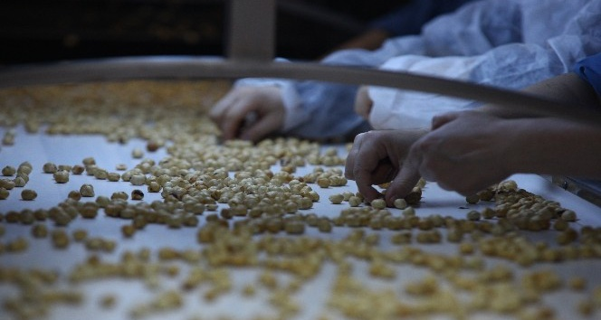 Karan'dan fındığın reyon fiyatlarına tepki