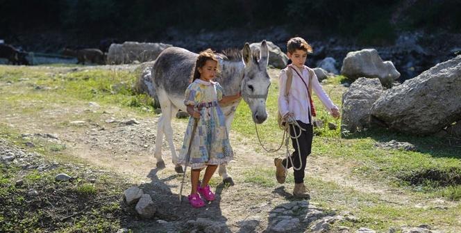 Onur Tan'dan sımsıcak bir aile filmi: Bal Kaymak