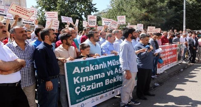 Arakan'daki katliam Bingöl'de protesto edildi