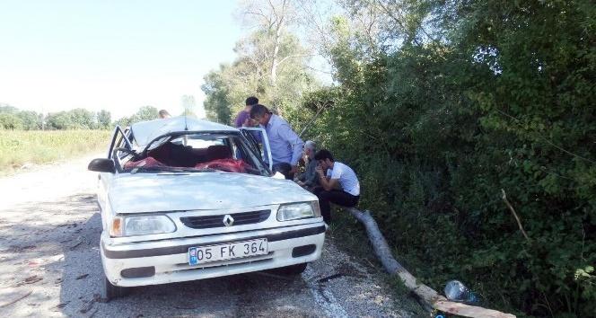 Sinop'ta otomobilin üzerine ağaç düştü: 1 ölü, 2 yaralı