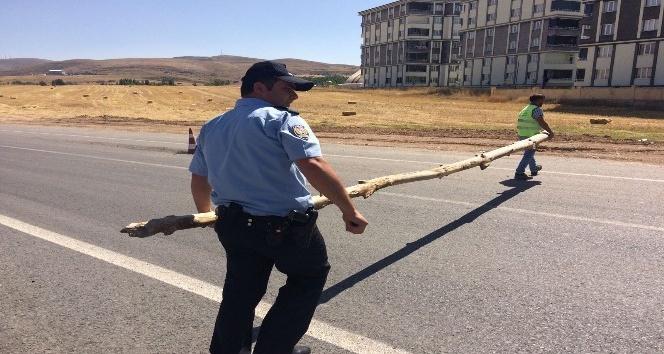 Ağaç tomruklarıyla yolu trafiğe kapattı
