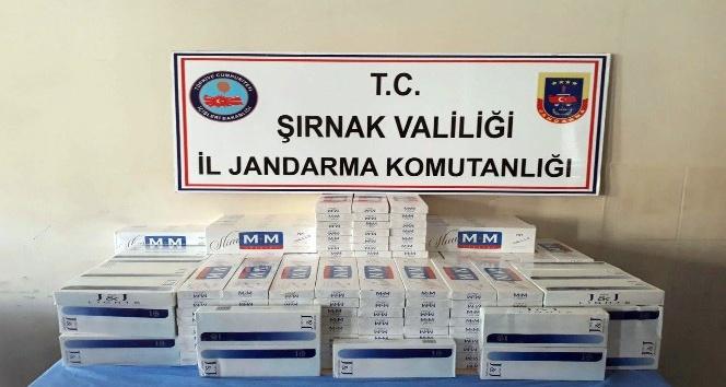 Şırnak'ta 19 bin paket kaçak sigara ele geçirildi