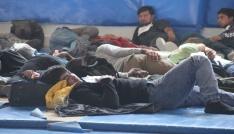 Boluda 94 kaçak yolcu yakalandı