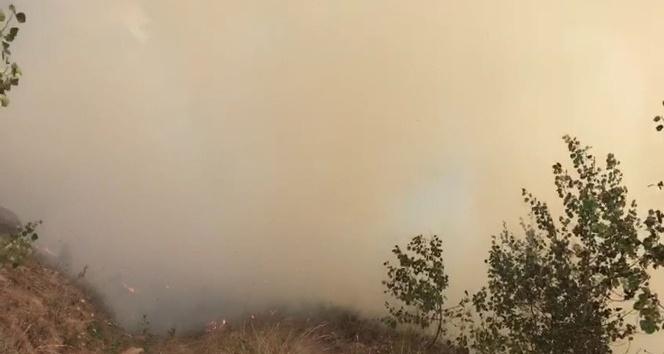 Sarıkamış'ta orman yangını söndürüldü