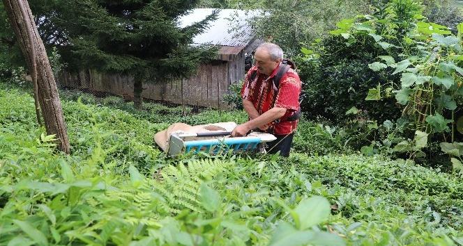 Geliştirdiği çay toplama makinesiyle günde 1 ton çay topluyor