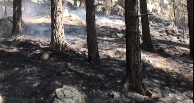 Sarıkamış cayır cayır yanıyor