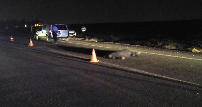 Yaşlı adam aydınlatması bulunmayan yolda kaza kurbanı oldu