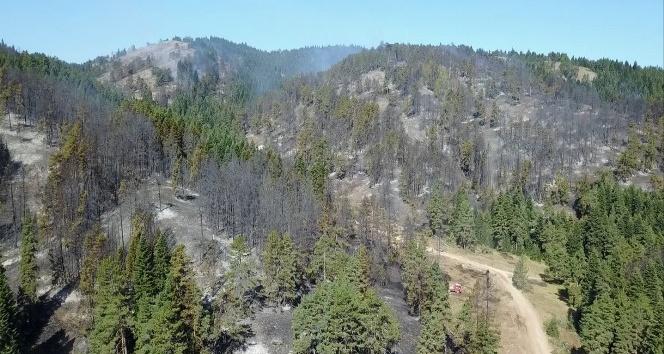 Bozüyük'te yangının tahribatı havadan görüntülendi
