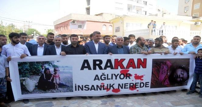 Cizre'de Arakan protestosu