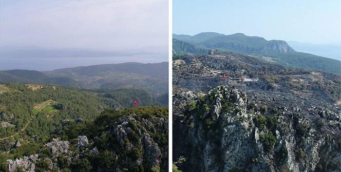 Zeytinköy'de yangın öncesi ve sonrası havadan görüntülendi