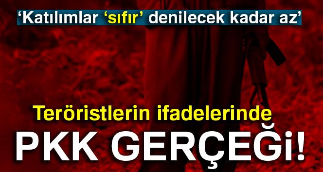 Teröristlerin ifadelerinde PKK gerçeği