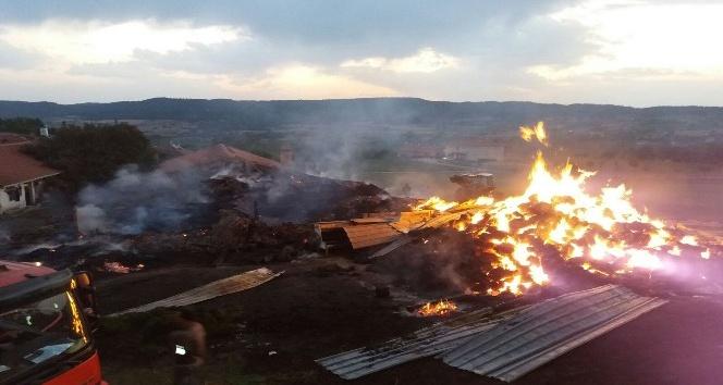 Kastamonu'da yangında 800 saman balyası yandı