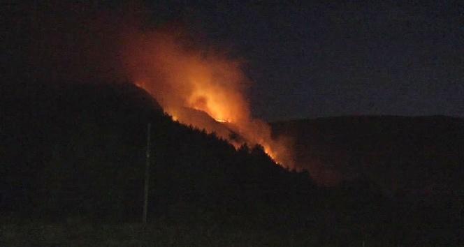 Karabük'teki orman yangını devam ediyor