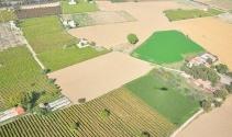 Türkiye'de tarım alanları azaldı