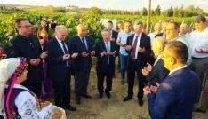 """""""3. Trakya Bağ Bozumu ve Ekoloji Festivali"""" başladı"""