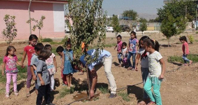 Okulun bahçesini meyve bahçesine dönüştürdüler