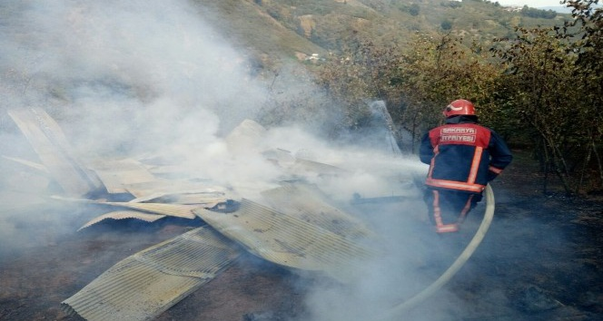 Fındık bahçesinde bulunan baraka yandı