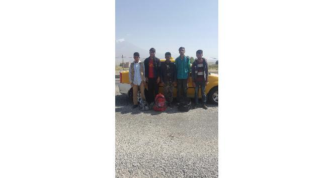 Doğubayazıt'ta 10 kaçak göçmen yakalandı