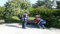 Sinopta Park Uygulaması