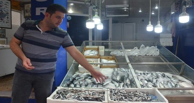 Hava şartları balık tezgahlarına yansıdı