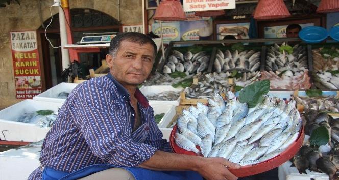 Kilis'te balık satışlarına yoğun ilgi
