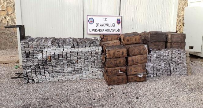 Şırnak'ta 41 bin 180 paket kaçak sigara ele geçirildi
