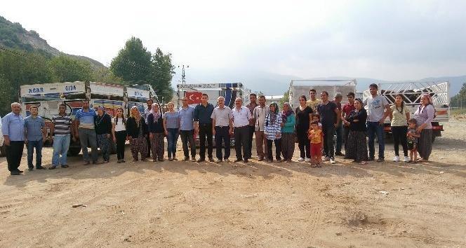 Genç Çiftçi Projesi kapsamında 36 baş damızlık sığır dağıtımı yapıldı
