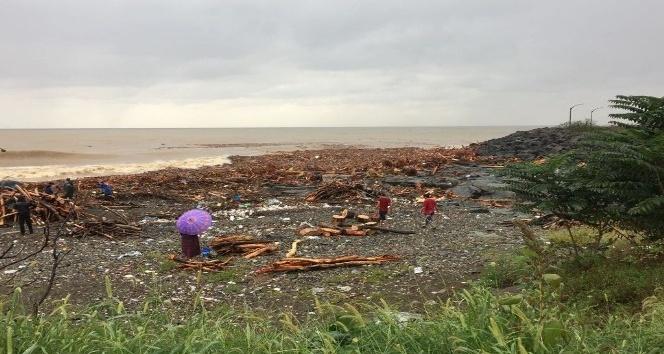 Sele kapılarak denize ulaşan odunlardan ve kütüklerden kışlık odun ihtiyaçlarını karşılıyorlar