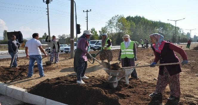 Simav'da çim ekimi çalışmaları