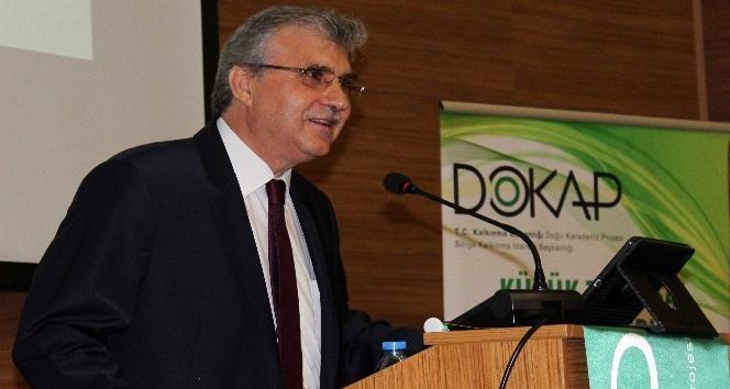 Doğu Karadeniz'de 400 bitki gelir kapısı olacak