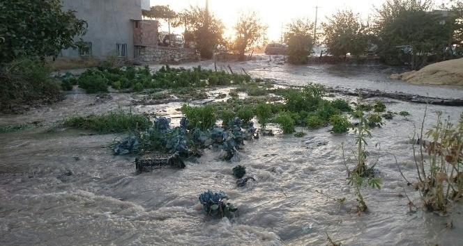 Nusaybin' de beyazsu hattı patladı