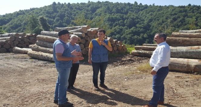 Orman Bölge Müdürü Keskin Akçakoca'da incelemelerde bulundu