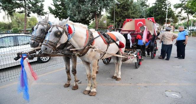 Adana'da fayton denetimi