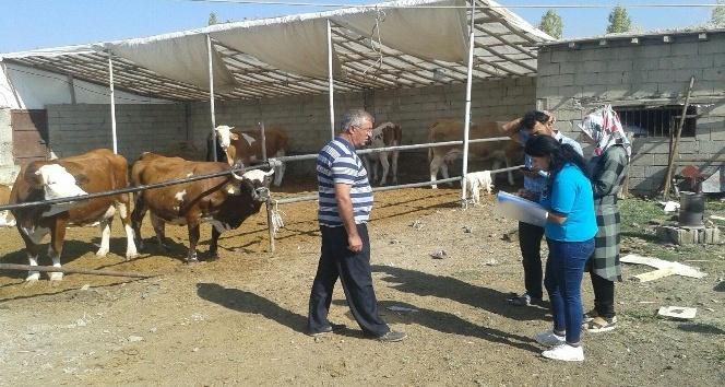 Edremit'te ahır sahibi çiftçiler bilgilendiriliyor
