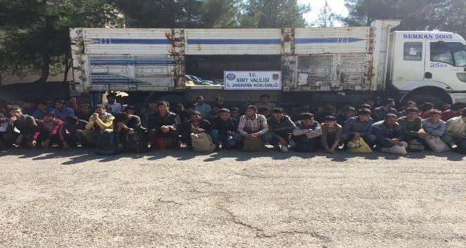 Siirt'te 88 kaçak mülteci yakalandı