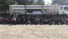 Siirtte 88 kaçak mülteci yakalandı